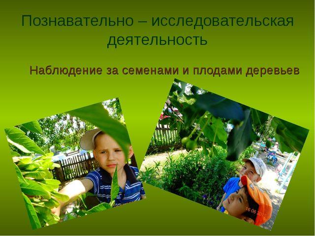 Познавательно – исследовательская деятельность Наблюдение за семенами и плода...