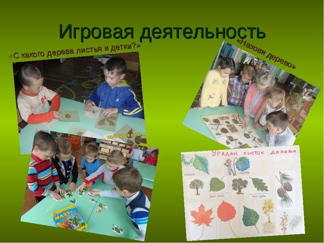 Игровая деятельность «С какого дерева листья и детки?» «Назови дерево»