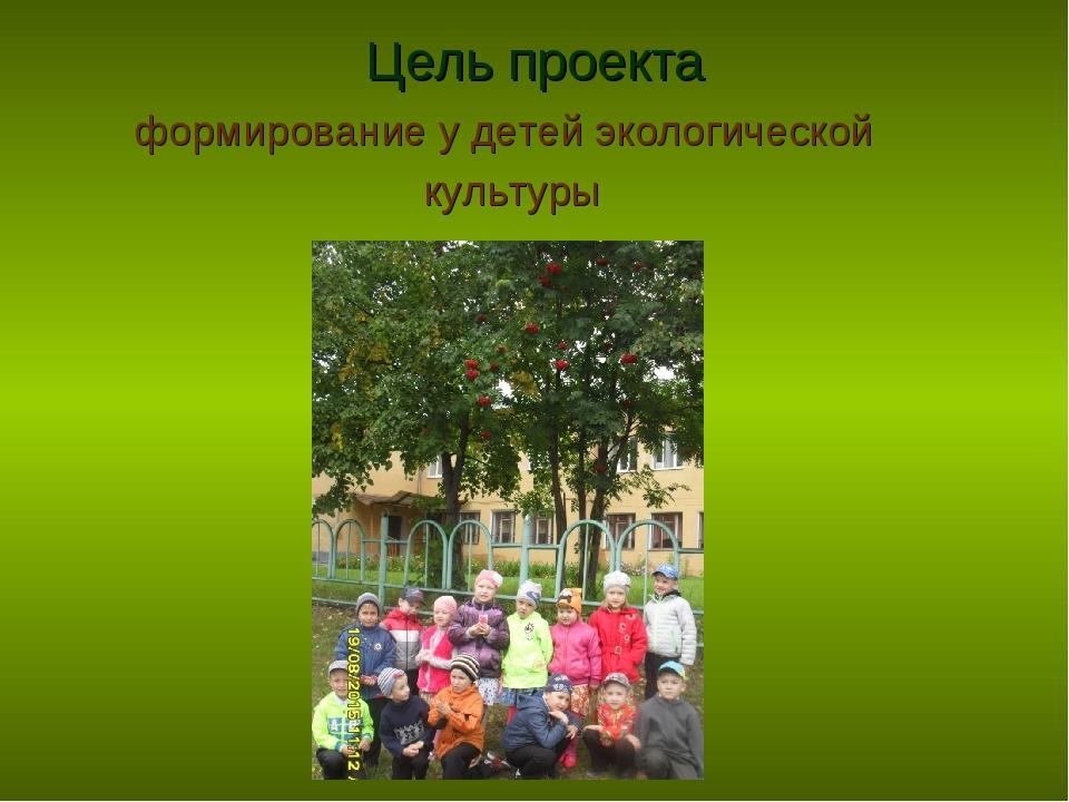 Цель проекта формирование у детей экологической культуры