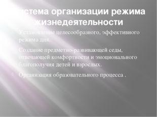 Система организации режима жизнедеятельности Установление целесообразного, эф