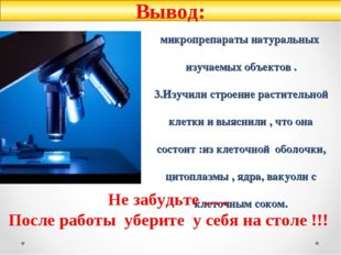 1.Получили первые навыки работы с микроскопом (умеем и знаем как настраивать