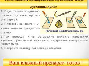 «Изготовление препарата клеток кожицы чешуи луковицы лука» 1.Подготовьте пре