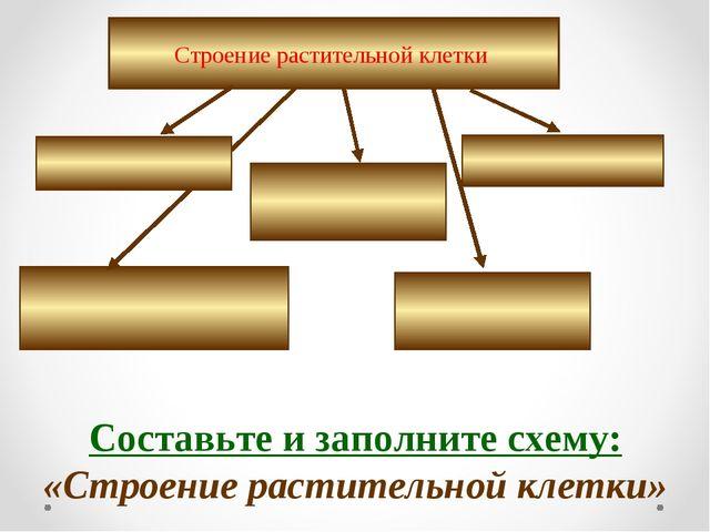 Строение растительной клетки Составьте и заполните схему: «Строение раститель...