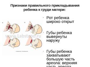 Признаки правильного прикладывания ребенка к груди матери: Рот ребенка широко
