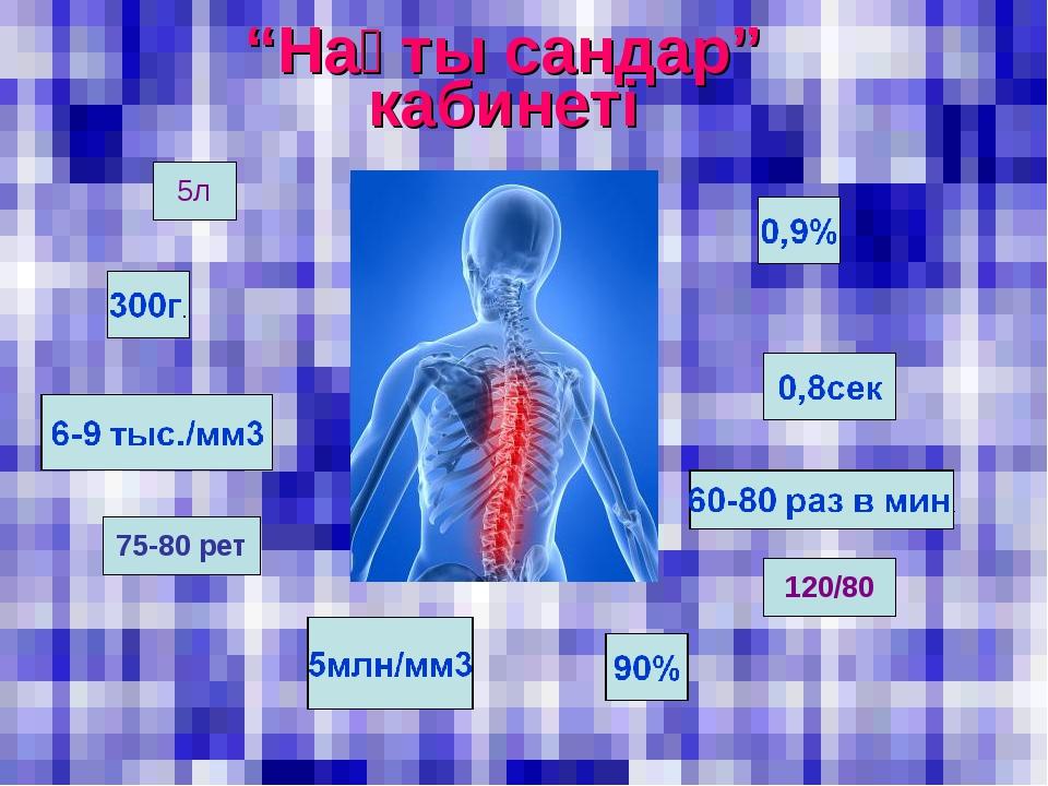 """""""Нақты сандар"""" кабинеті 5л 120/80 75-80 рет"""