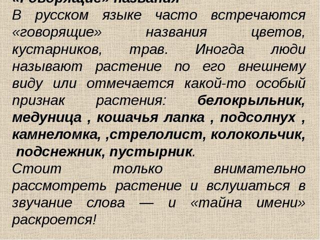 «Говорящие» названия В русском языке часто встречаются «говорящие» названия ц...