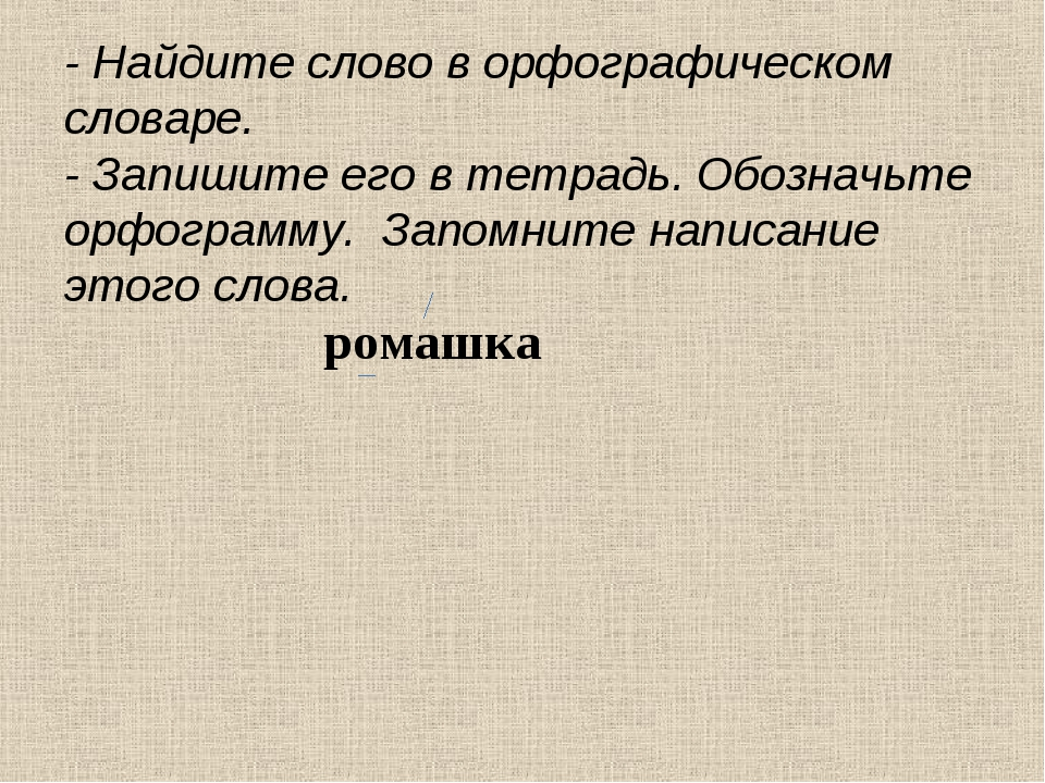 ромашка - Найдите слово в орфографическом словаре. - Запишите его в тетрадь....