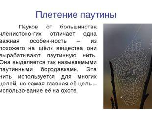 Плетение паутины Пауков от большинства членистоно-гих отличает одна важная ос