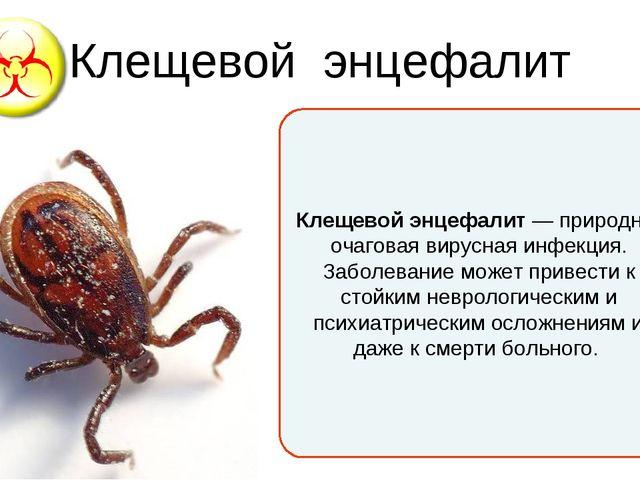 Клещевой энцефалит Клещевой энцефалит— природно-очаговаявируснаяинфекция....
