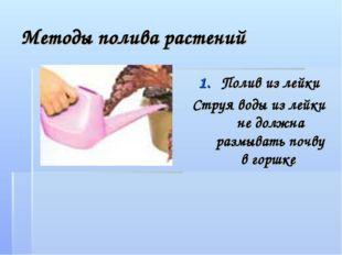 Методы полива растений Полив из лейки Струя воды из лейки не должна размывать
