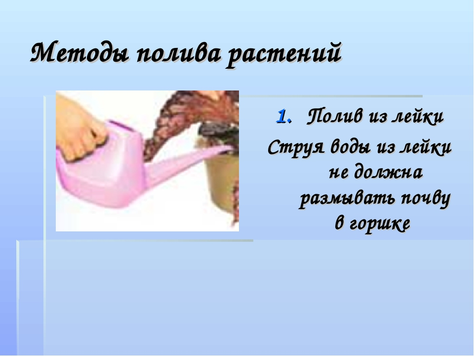 Методы полива растений Полив из лейки Струя воды из лейки не должна размывать...