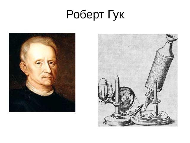 Роберт Гук