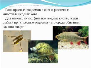 Роль пресных водоемов в жизни различных животных неодинакова. Для многих из