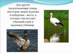 Для других (водоплавающие птицы, некоторые звери) водоемы и побережья - места