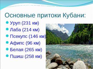 Основные притоки Кубани: Уруп (231 км) Лаба (214 км) Псекупс (146 км) Афипс (