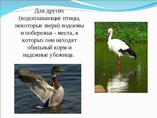Для других (водоплавающие птицы, некоторые звери) водоемы и побережья - места...