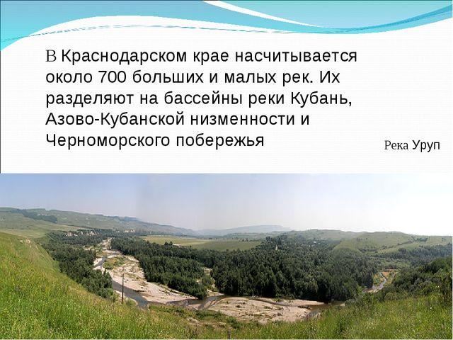 В Краснодарском крае насчитывается около 700 больших и малых рек. Их разделяю...