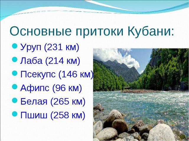 Основные притоки Кубани: Уруп (231 км) Лаба (214 км) Псекупс (146 км) Афипс (...