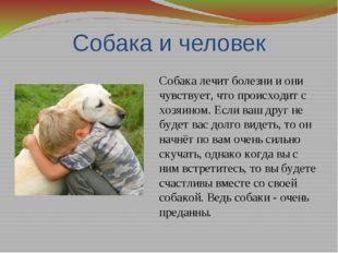 Собака и человек Собака лечит болезни и они чувствует, что происходит с хозяи