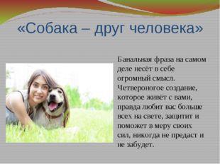 «Собака – друг человека» Банальная фраза на самом деле несёт в себе огромный