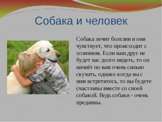 Польза от собаки картинки