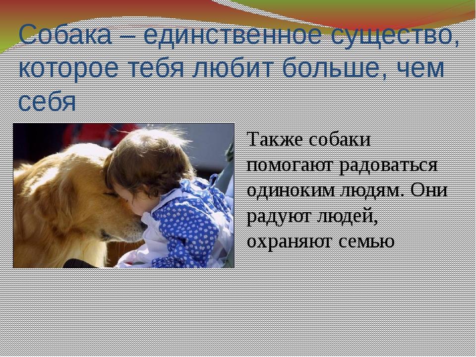 Собака – единственное существо, которое тебя любит больше, чем себя Также соб...