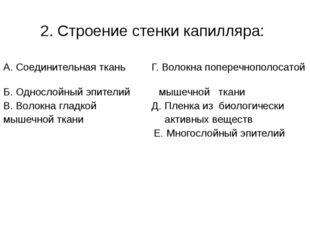 2. Строение стенки капилляра: А. Соединительная ткань Г. Волокна поперечнопол
