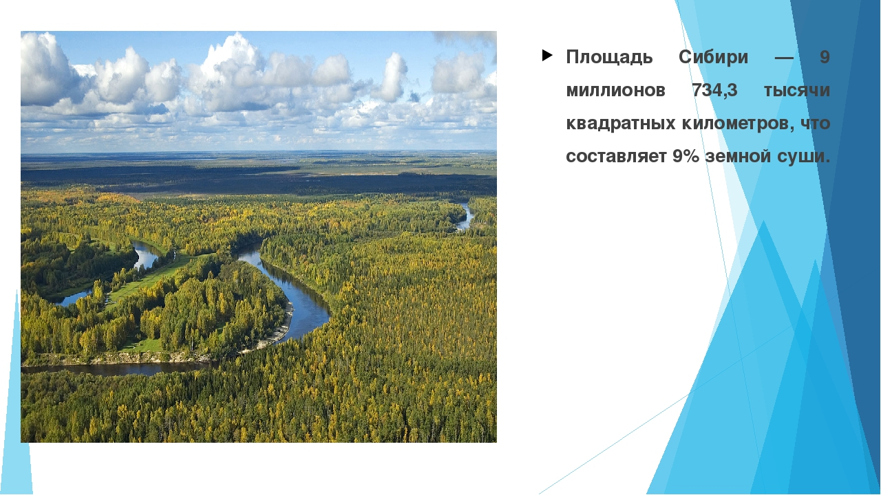 Площадь Сибири — 9 миллионов 734,3 тысячи квадратных километров, что составля...