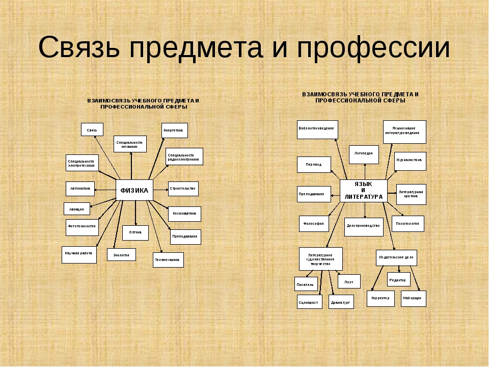 Связь предмета и профессии