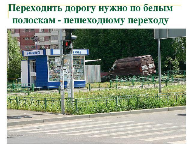 Переходить дорогу нужно по белым полоскам - пешеходному переходу