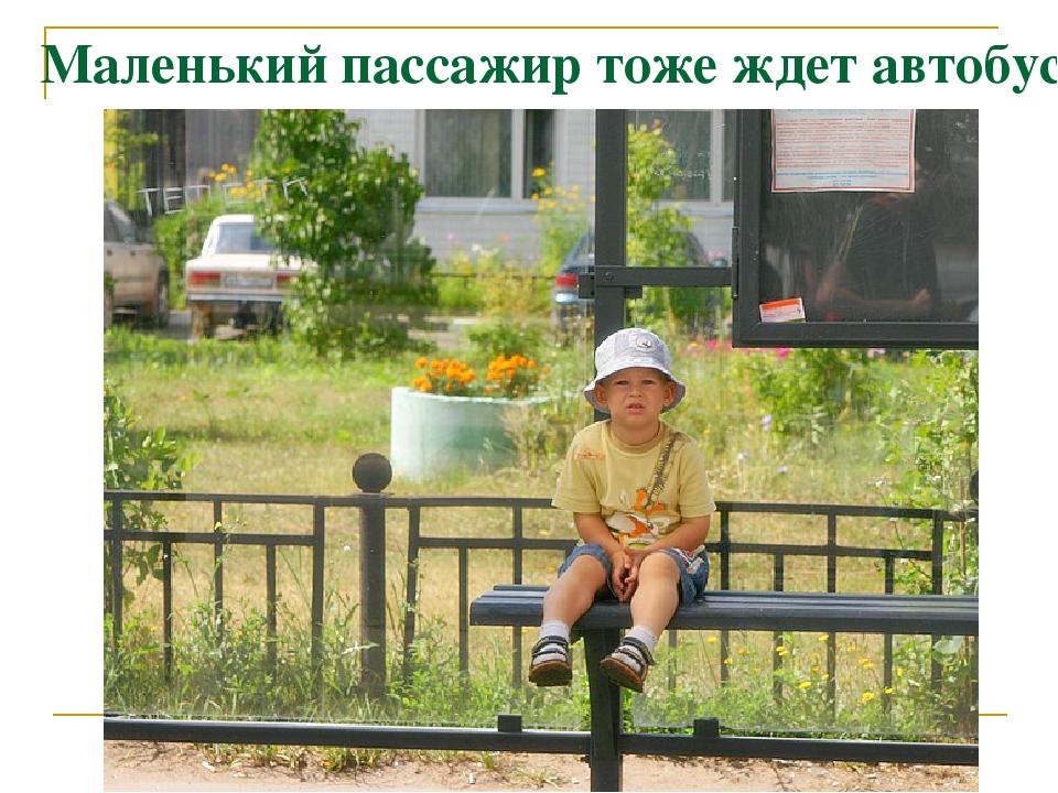 Маленький пассажир тоже ждет автобус