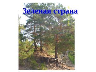 Зеленая страна
