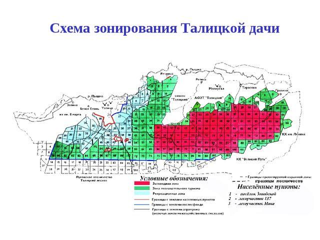 Схема зонирования Талицкой дачи