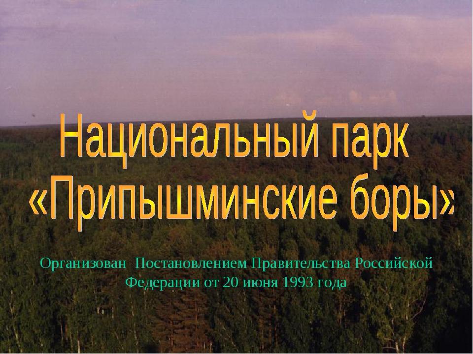 Организован Постановлением Правительства Российской Федерации от 20 июня 1993...