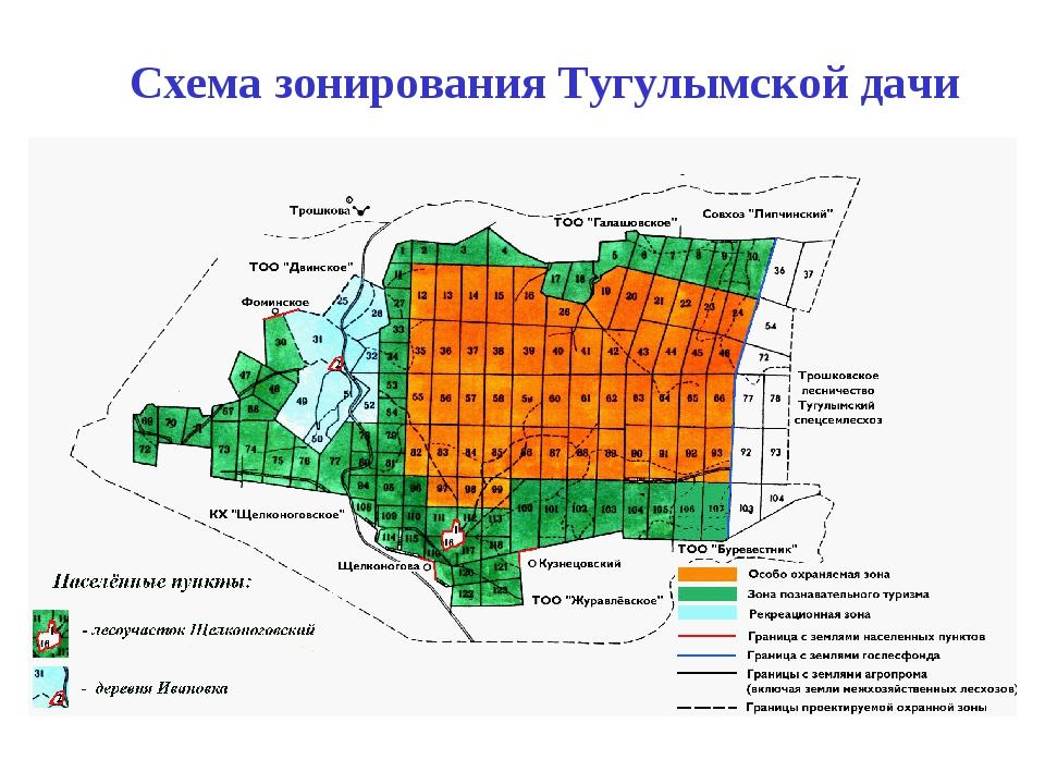 Схема зонирования Тугулымской дачи