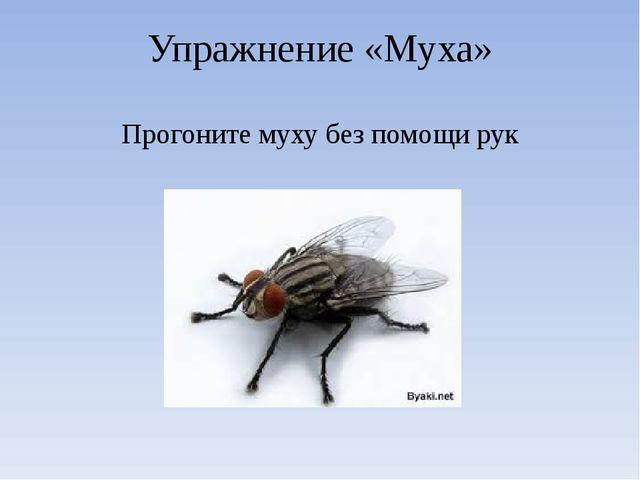 Упражнение «Муха» Прогоните муху без помощи рук
