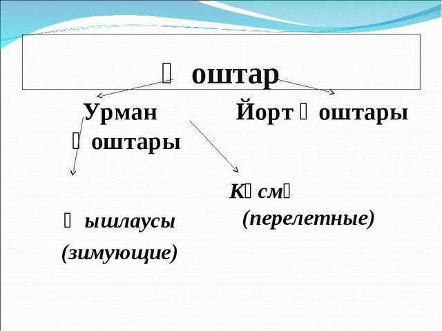 Ҡоштар Урман ҡоштары Ҡышлаусы (зимующие) Йорт ҡоштары Күсмә (перелетные)