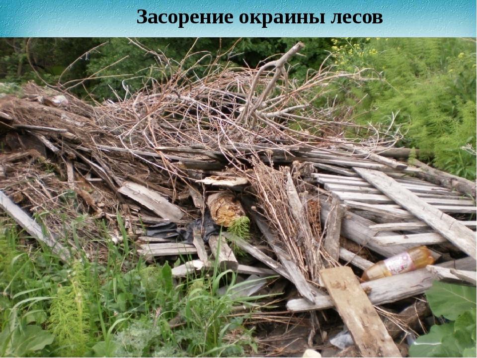 Засорение окраины лесов