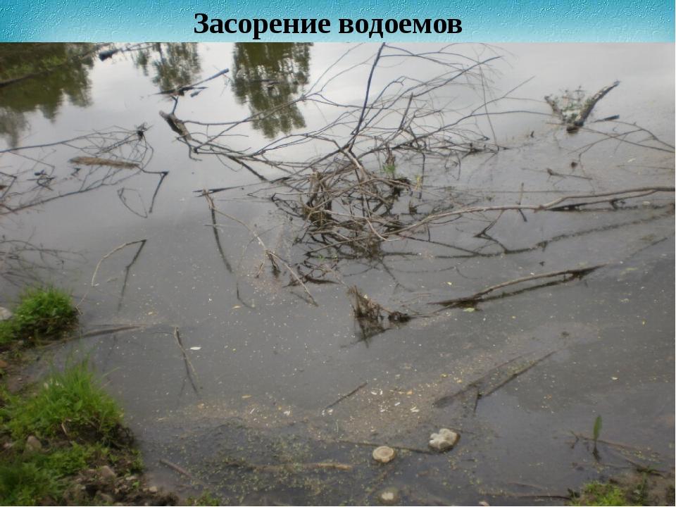 Засорение водоемов