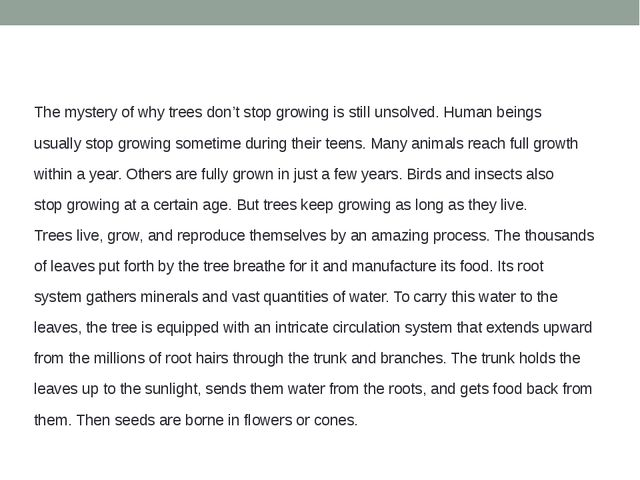 The mystery of why trees don't stop growing is still unsolved. Human beings...