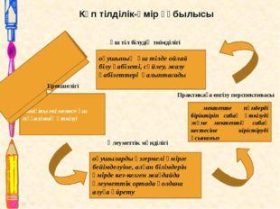 Көп тілділік-өмір құбылысы сабақты екі немесе үш мұғалімнің өткізуі Практикағ