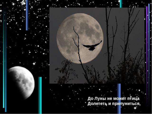До Луны не может птица Долететь и прилуниться,