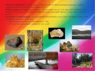 Полезные ископаемые: в нашей стране имеются почти все виды полезных ископаемы