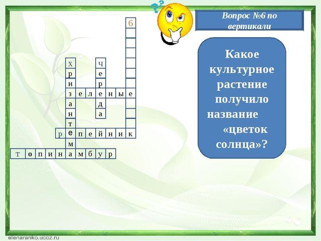 11 з111 а е л е н ы е и р н т м а р е ч х д а р п е й н и к н и п о т м б у р...