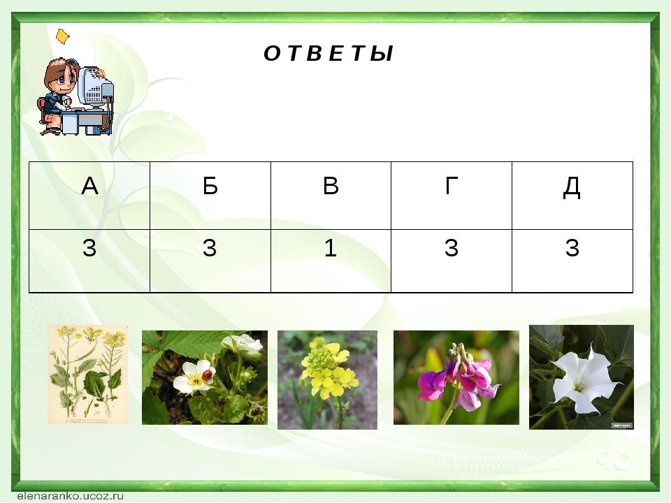 О Т В Е Т Ы АБВГД 33133