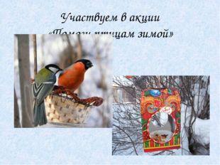 Участвуем в акции «Помоги птицам зимой»