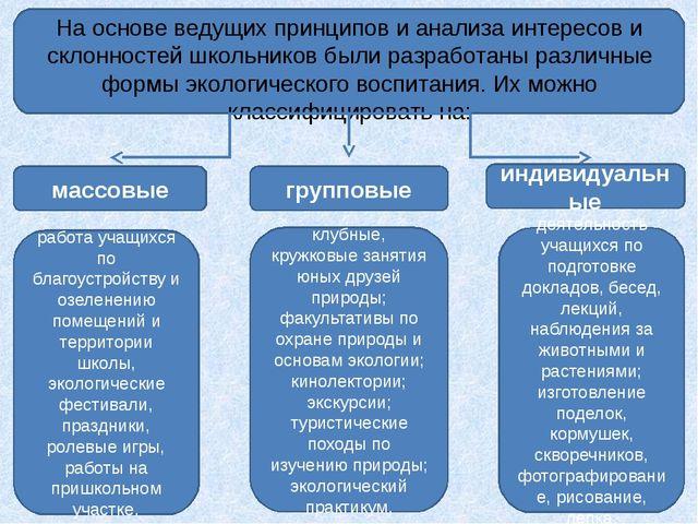 На основе ведущих принципов и анализа интересов и склонностей школьников был...