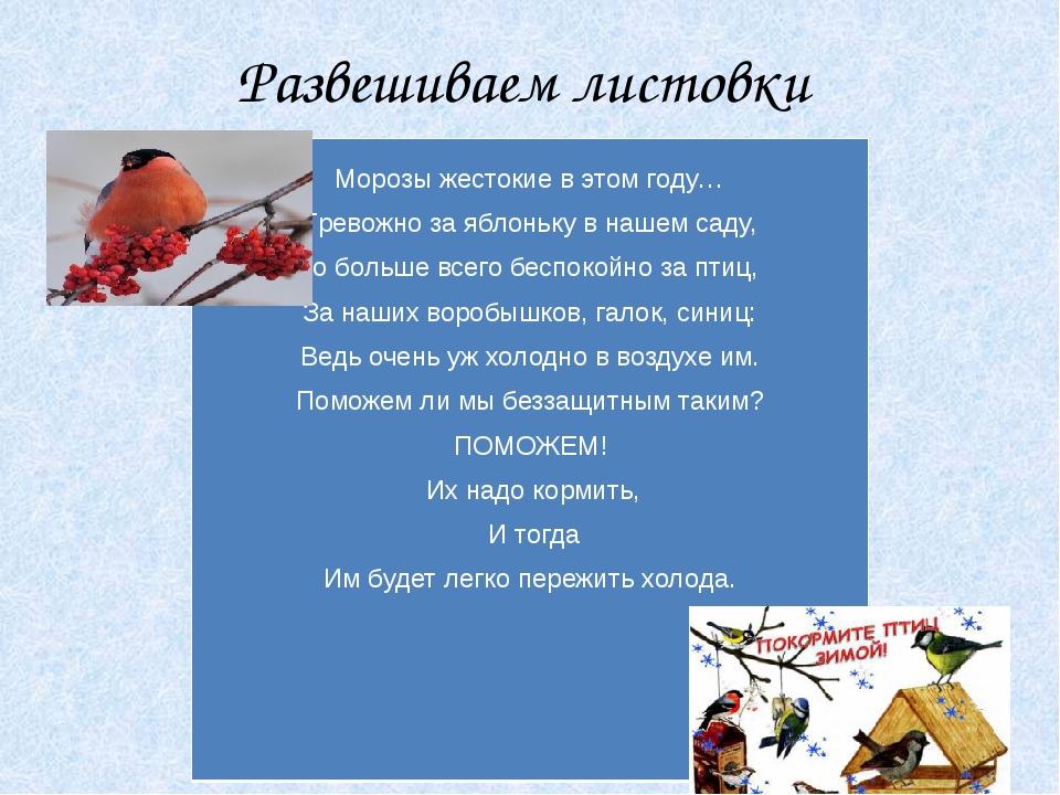 Развешиваем листовки «Покормите птиц зимой!» Морозыжестокиев этом году… Трево...
