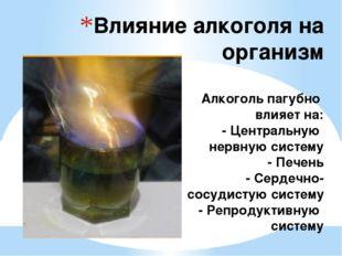 Влияние алкоголя на организм Алкоголь пагубно влияет на: - Центральную нервну