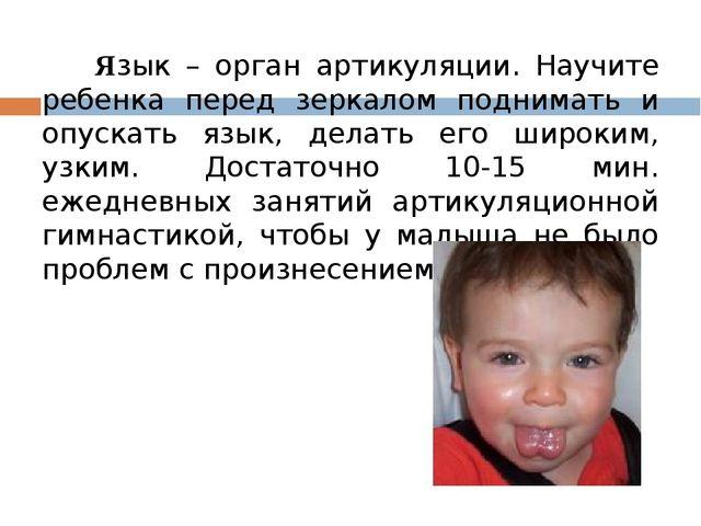 Язык – орган артикуляции. Научите ребенка перед зеркалом поднимать и опускат...